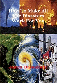 How To Make All Life Disasters Work For You cover image
