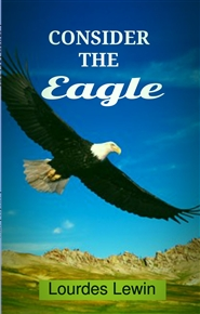 Consider The Eagle cover image