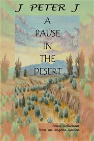 A Pause in the Desert cover image