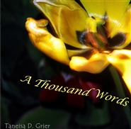 A Thousand Words cover image