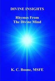 DIVINE INSIGHTS Rhymes From The Divine Mind cover image