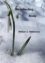 Recollecting Snow cover image