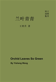 Orchid Leaves So Green cover image