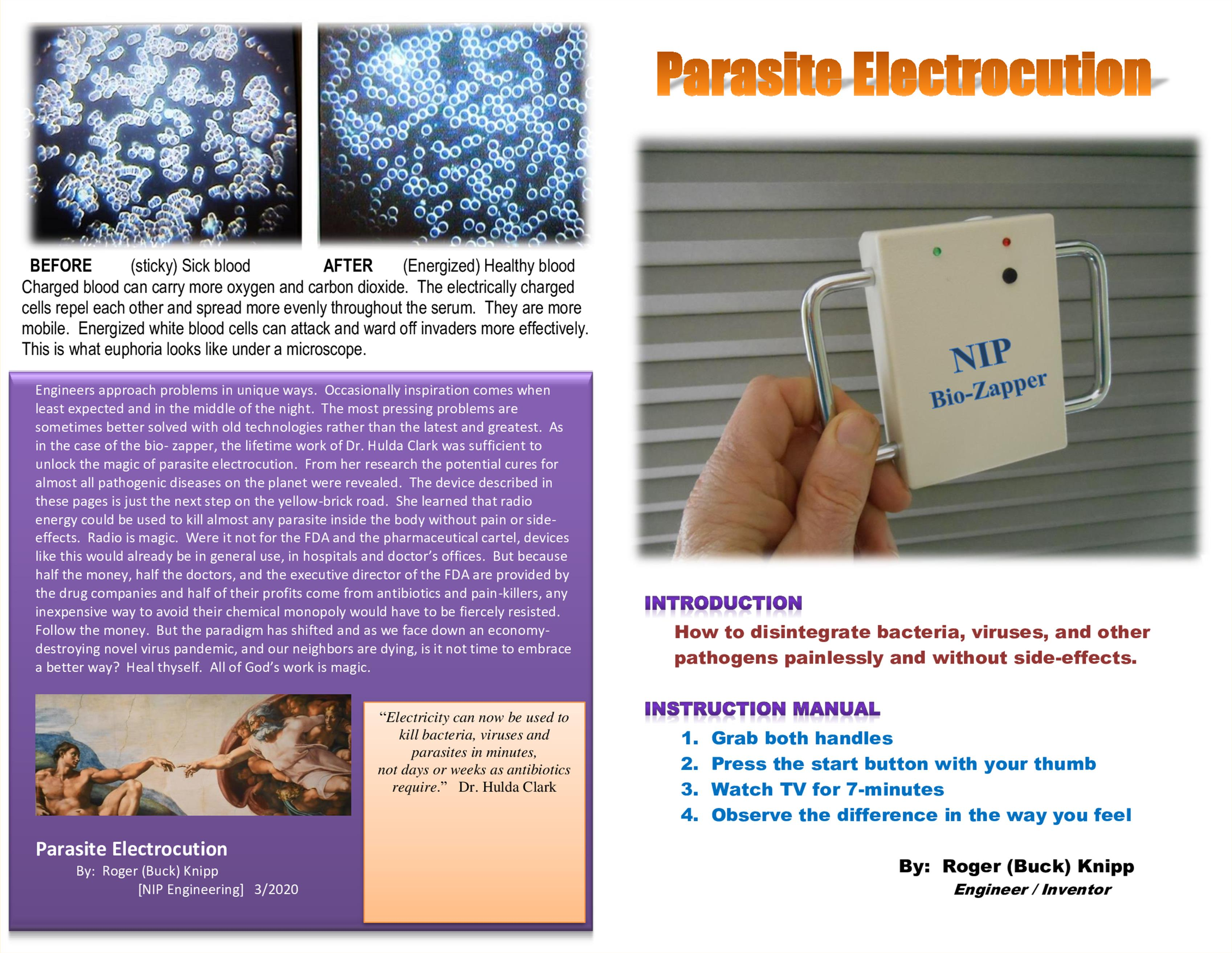 Parasite Electrocution cover image