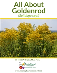 All About Goldenrod cover image