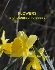 FLOWERS a photographic essay cover image