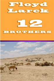 12 BROTHERS cover image