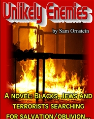 """Unlikely Enemies"" cover image"