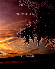 The World at Large cover image