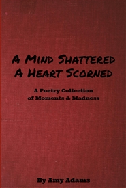 A Mind Shattered. A Heart Scorned. cover image