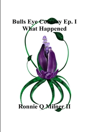 Bulls Eye Country Ep. I What Happened cover image