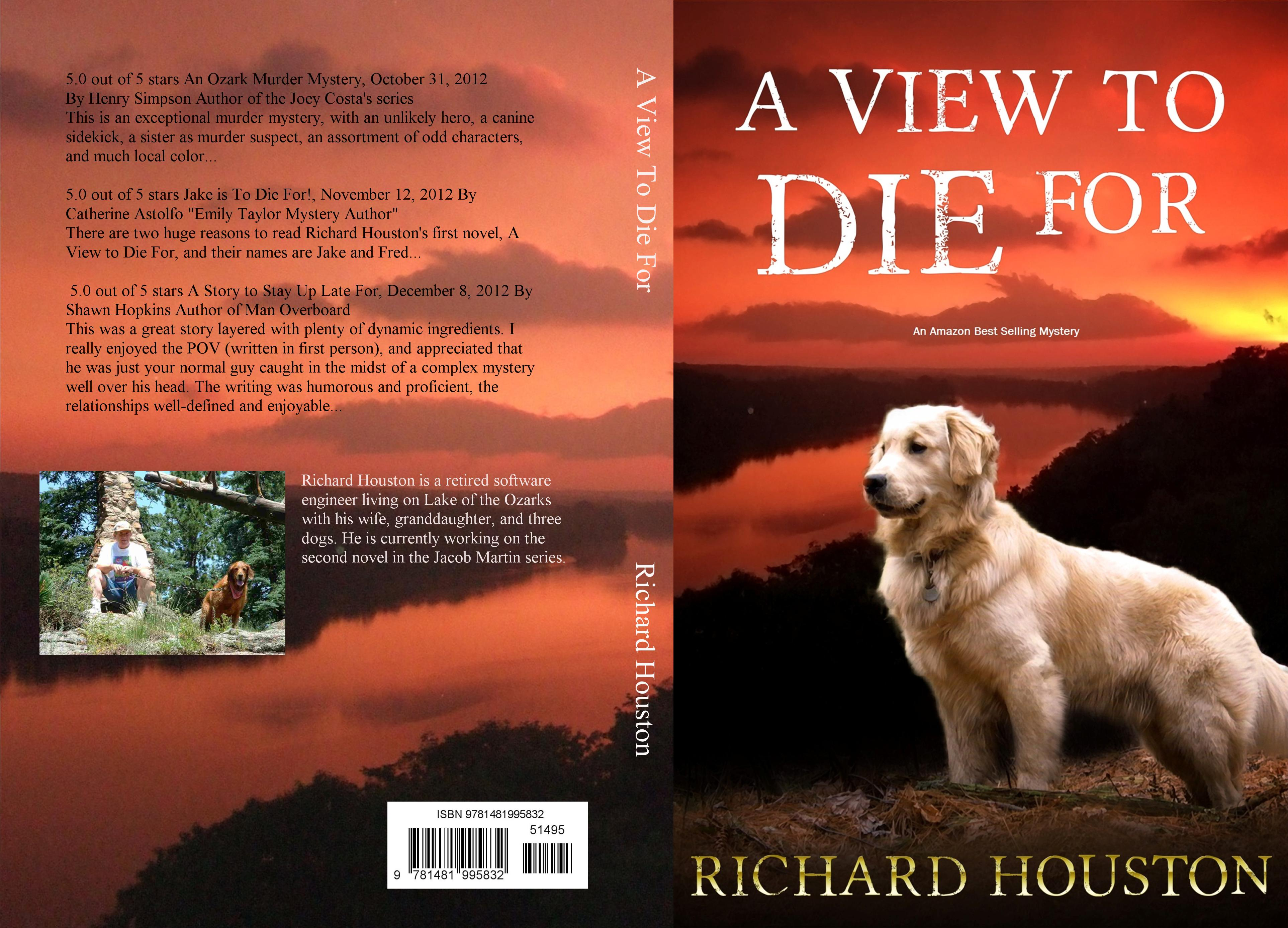 A View To Die For cover image