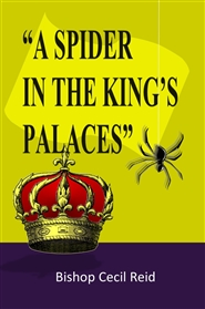 A Spider in the Kings Palace cover image