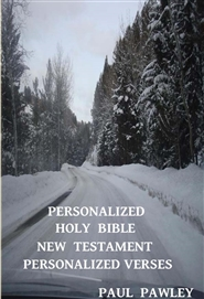 Personalized Holy Bible New Testament Personalized Verses Only cover image