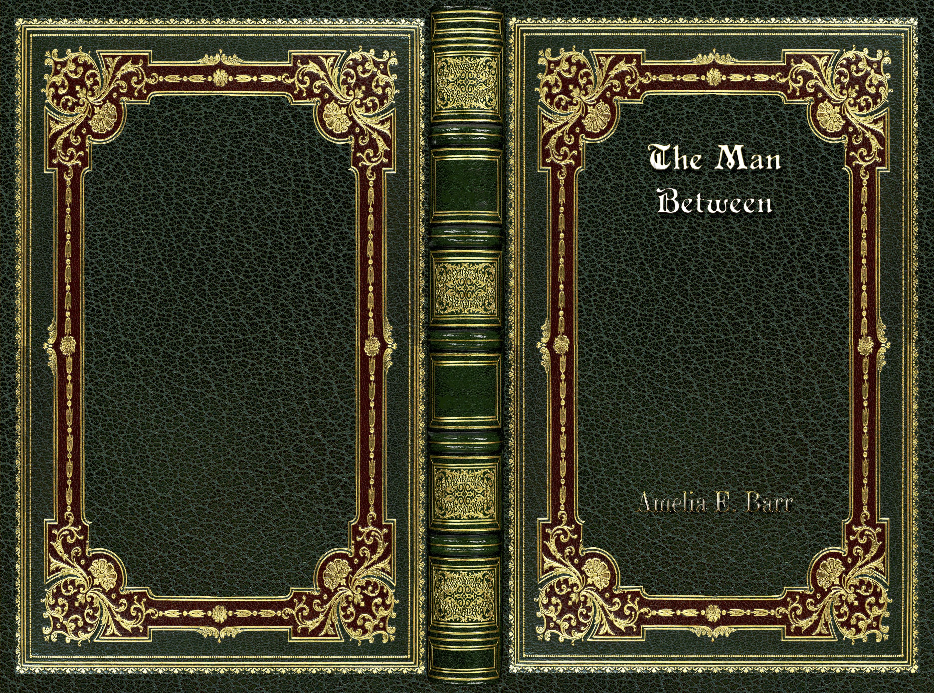The Man Between cover image