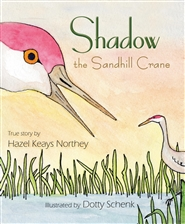 Shadow the Sandhill Crane cover image