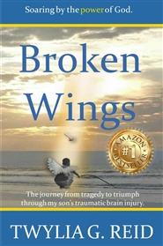 BROKEN WINGS - The Journey from Tragedy to Triumph through My Son's Traumatic Brain Injury cover image
