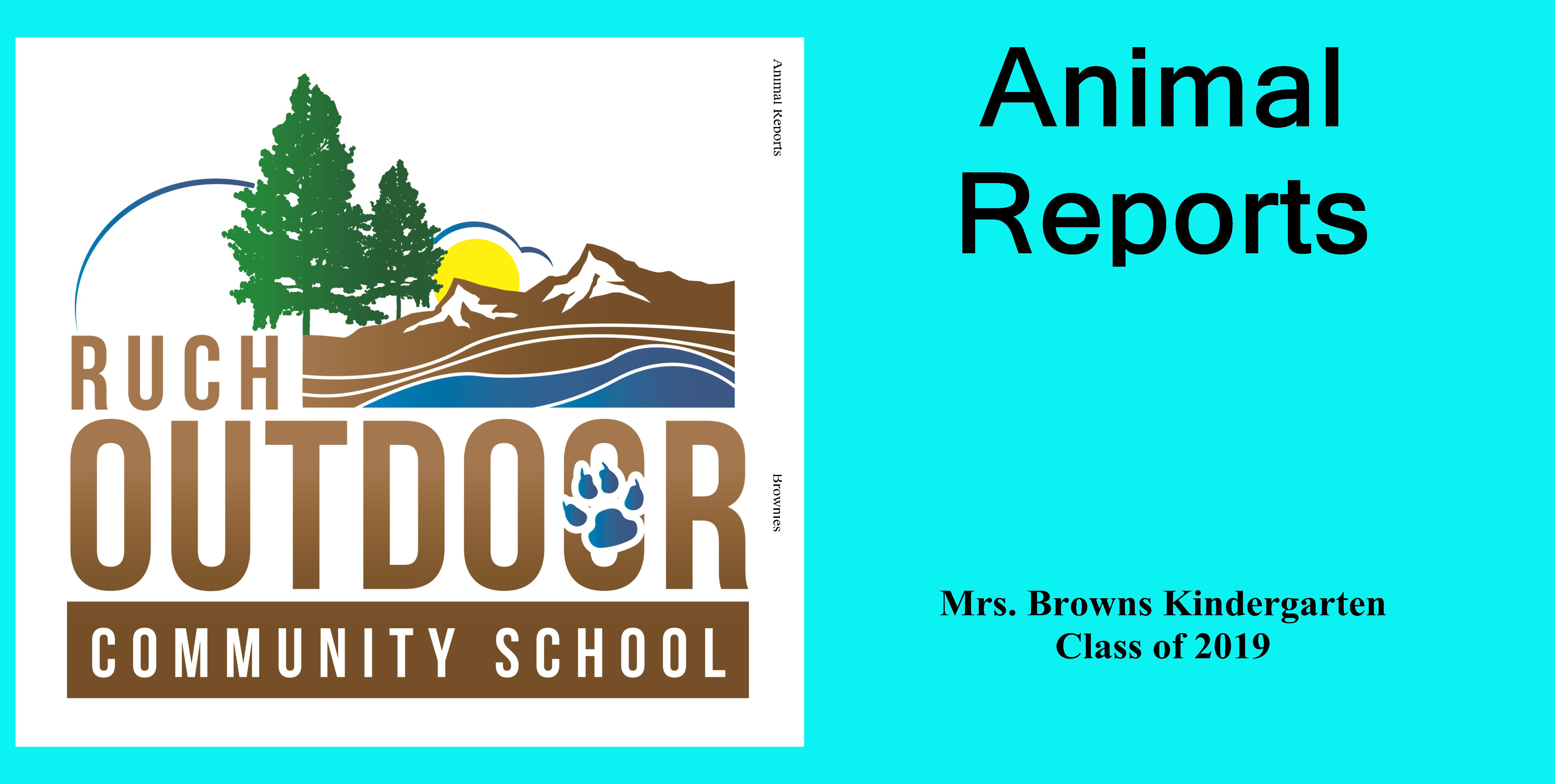 Animal Reports cover image