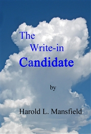 The Write-in Candidate cover image