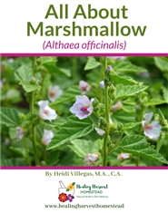 All About Marshmallow cover image