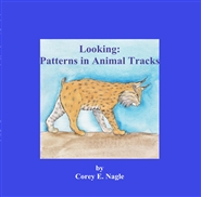 Looking: Patterns in Animal Tracks cover image