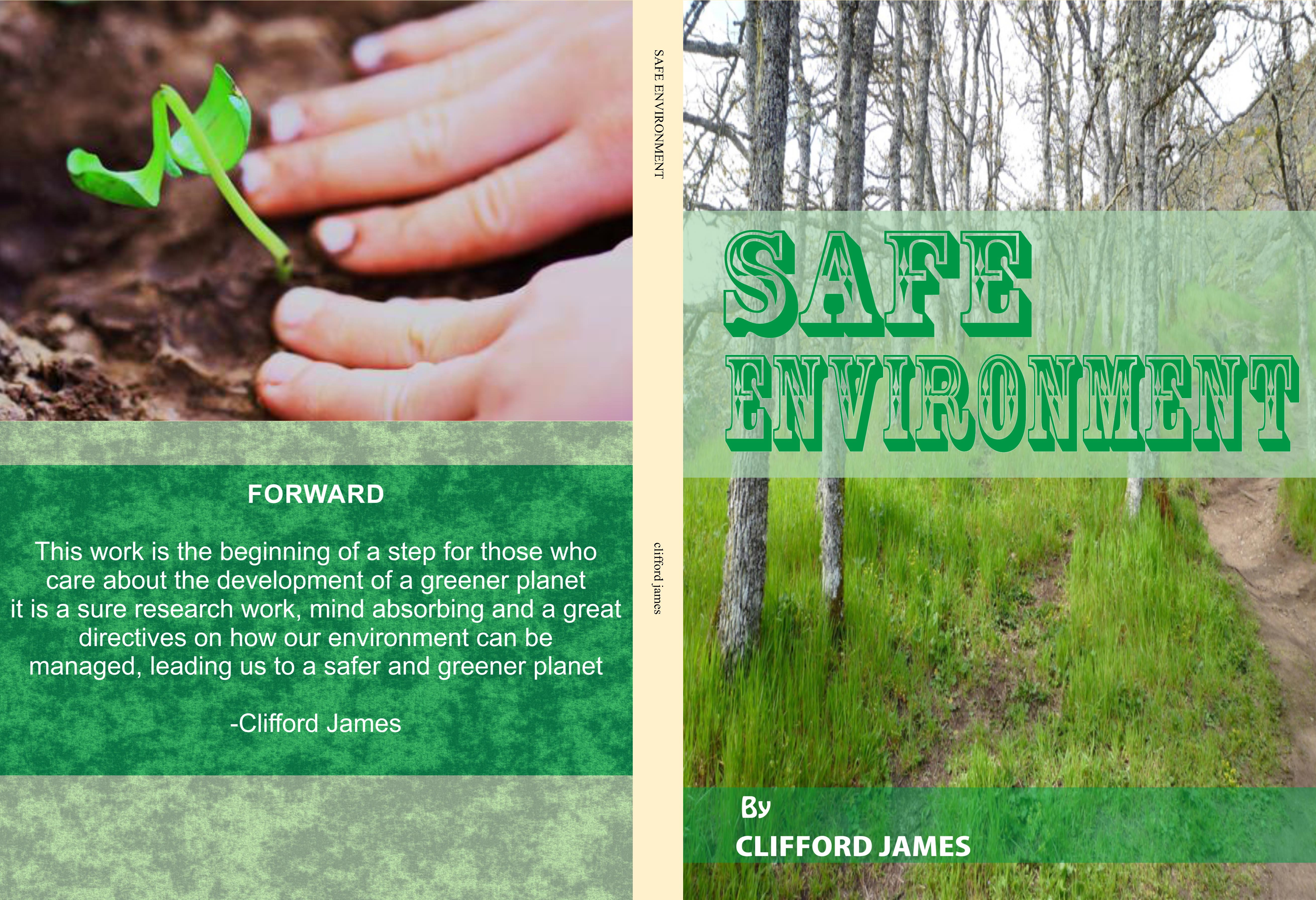 SAFE ENVIRONMENT cover image