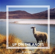 Up on the Andes cover image