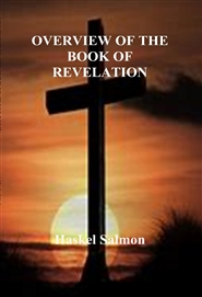 OVERVIEW OF THE BOOK OF REVELATION cover image