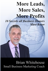 More Leads, More Sales, More Profits: 10 Secrets all Business Owners Must Know cover image