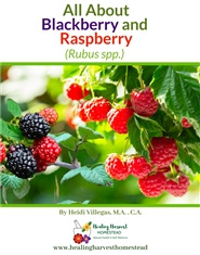 All About Blackberry and Raspberry cover image