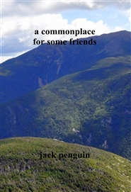 a commonplace for some friends cover image