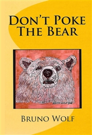 DON'T POKE THE BEAR cover image