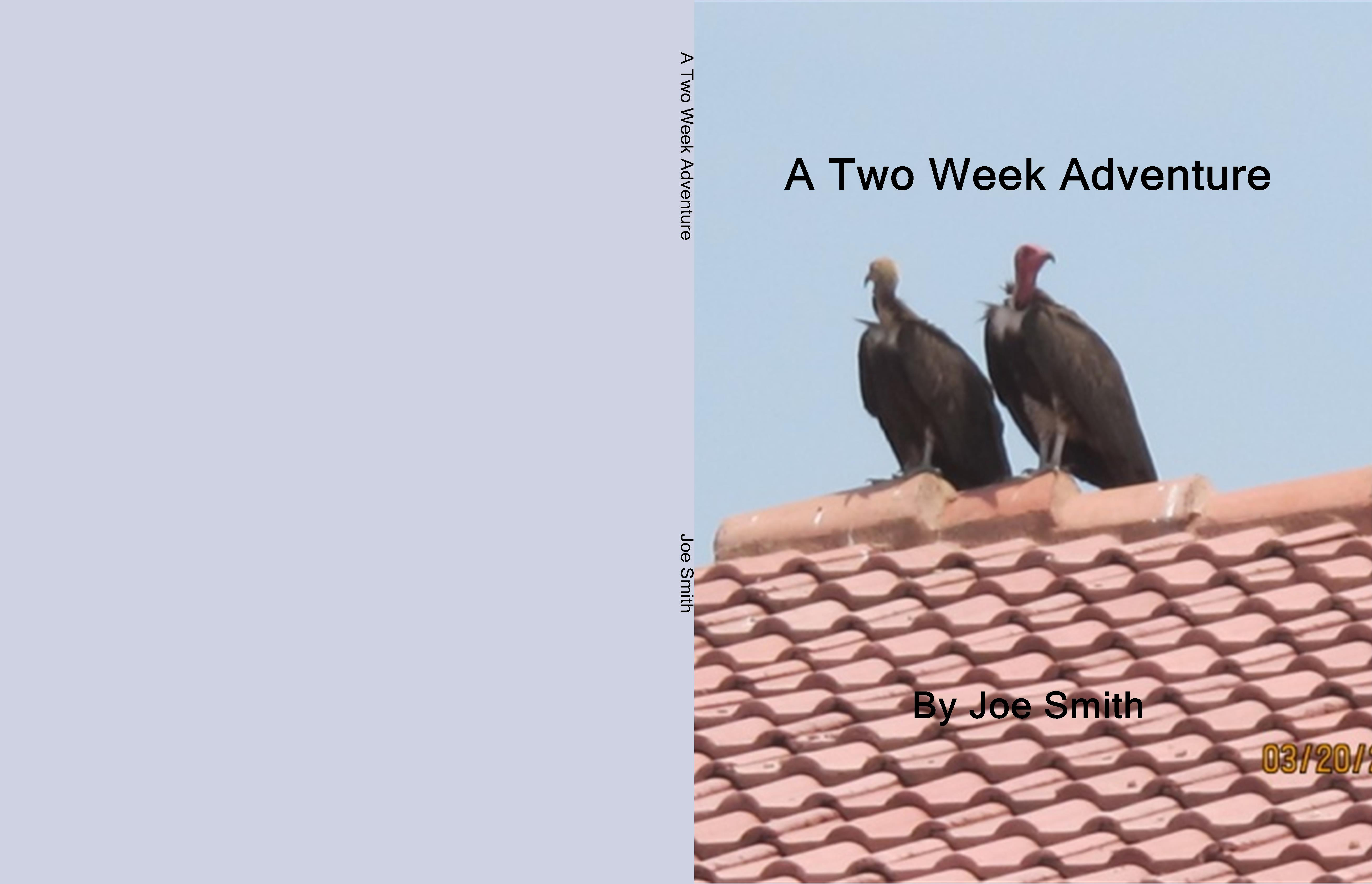 A Two Week Adventure cover image
