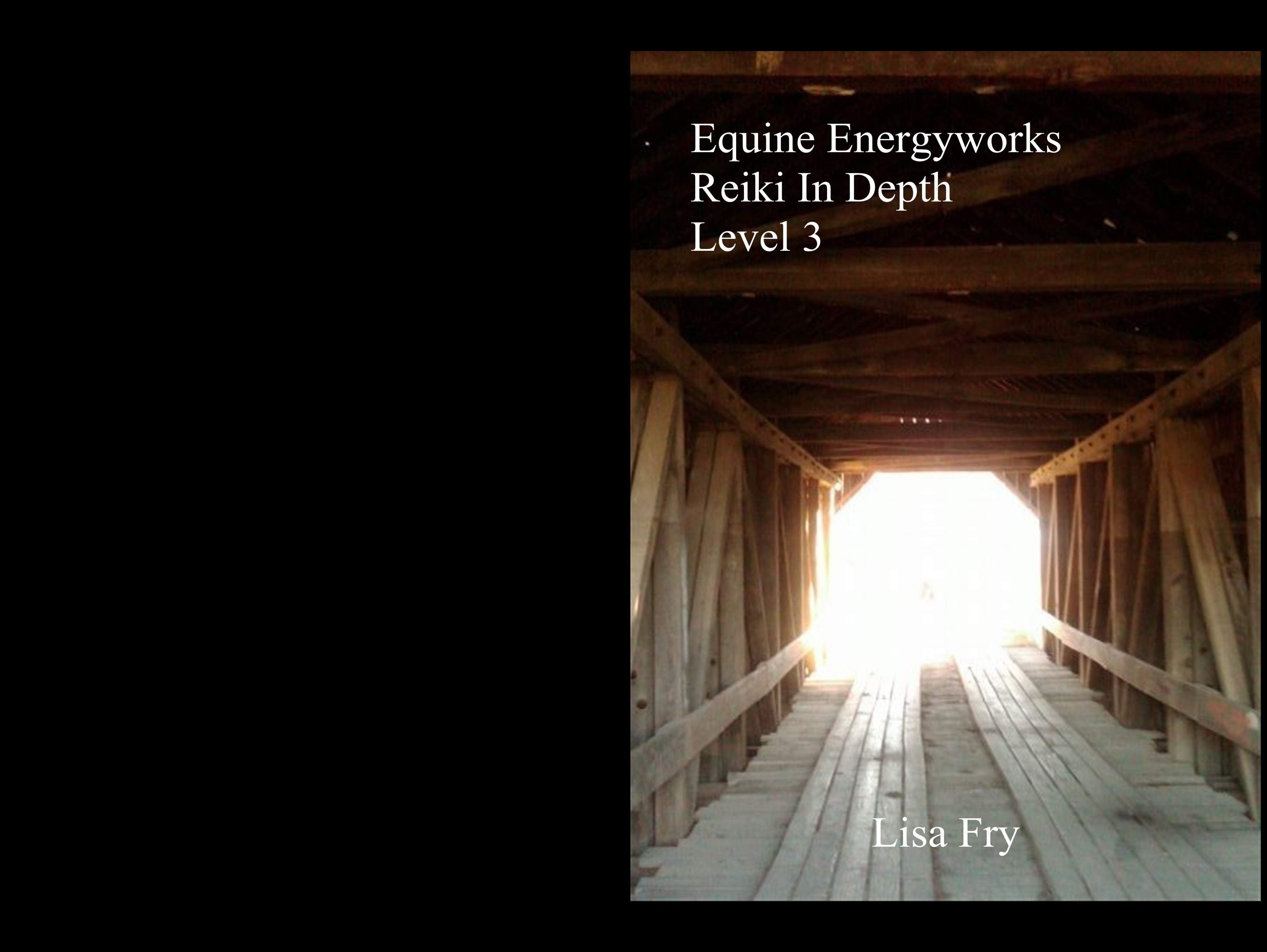 Equine Energyworks Reiki In Depth Level 3 cover image