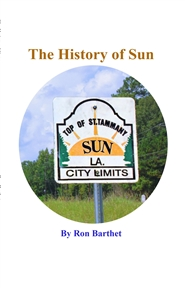 The History of Sun cover image