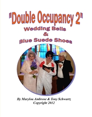 Double Occupancy 2 cover image