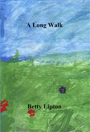 A Long Walk cover image