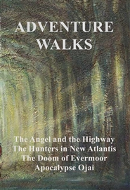 ADVENTURE WALKS cover image