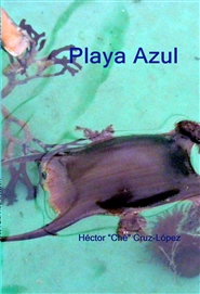 Playa Azul cover image