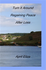 Turn It Around Regaining Peace After Loss cover image