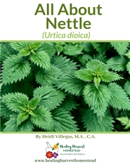All About Nettle cover image