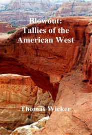 Blowout: Tallies of the American West cover image