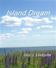 Island Dream cover image