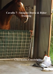 Cavallo 7 - Imagine Horse & Rider Training cover image