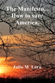 The Manifesto... How to save America. cover image