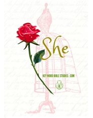 SHE -PROVERBS 31 KEY WORD BIBLE STUDY cover image