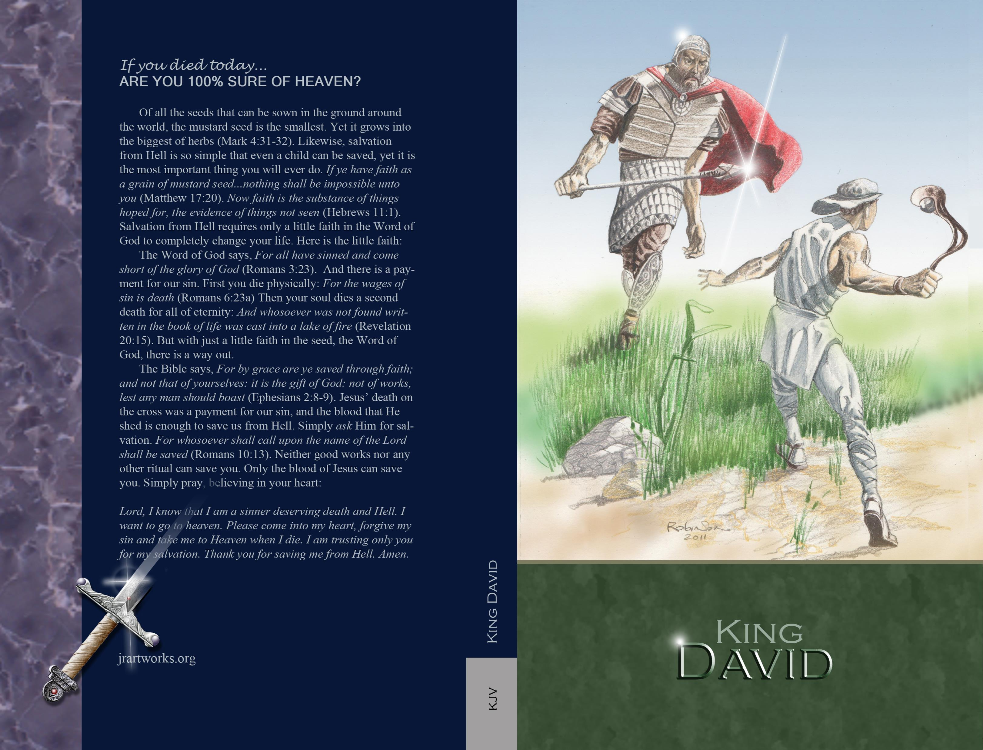 King David - KJV cover image