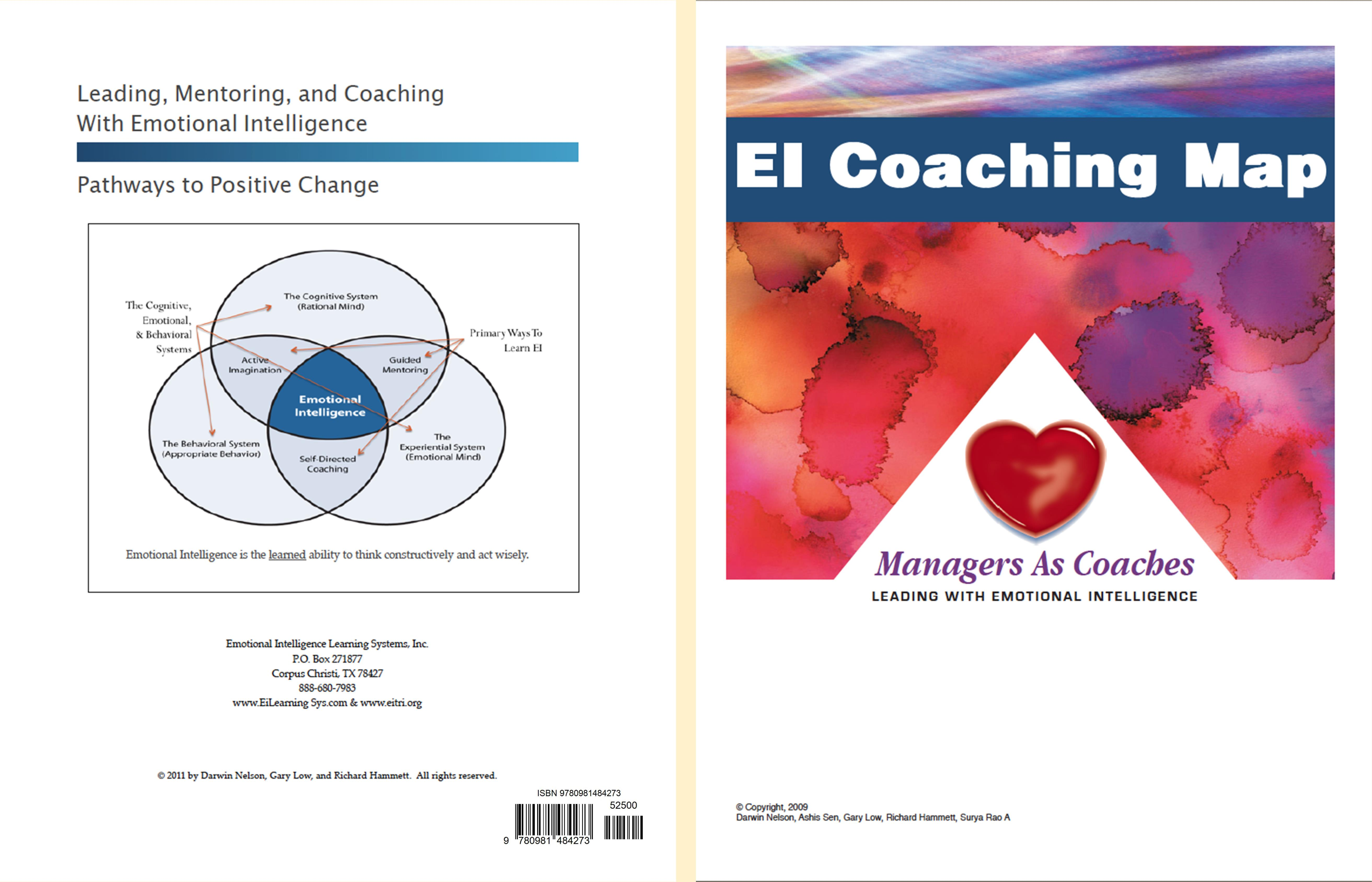 EI Coaching Map cover image