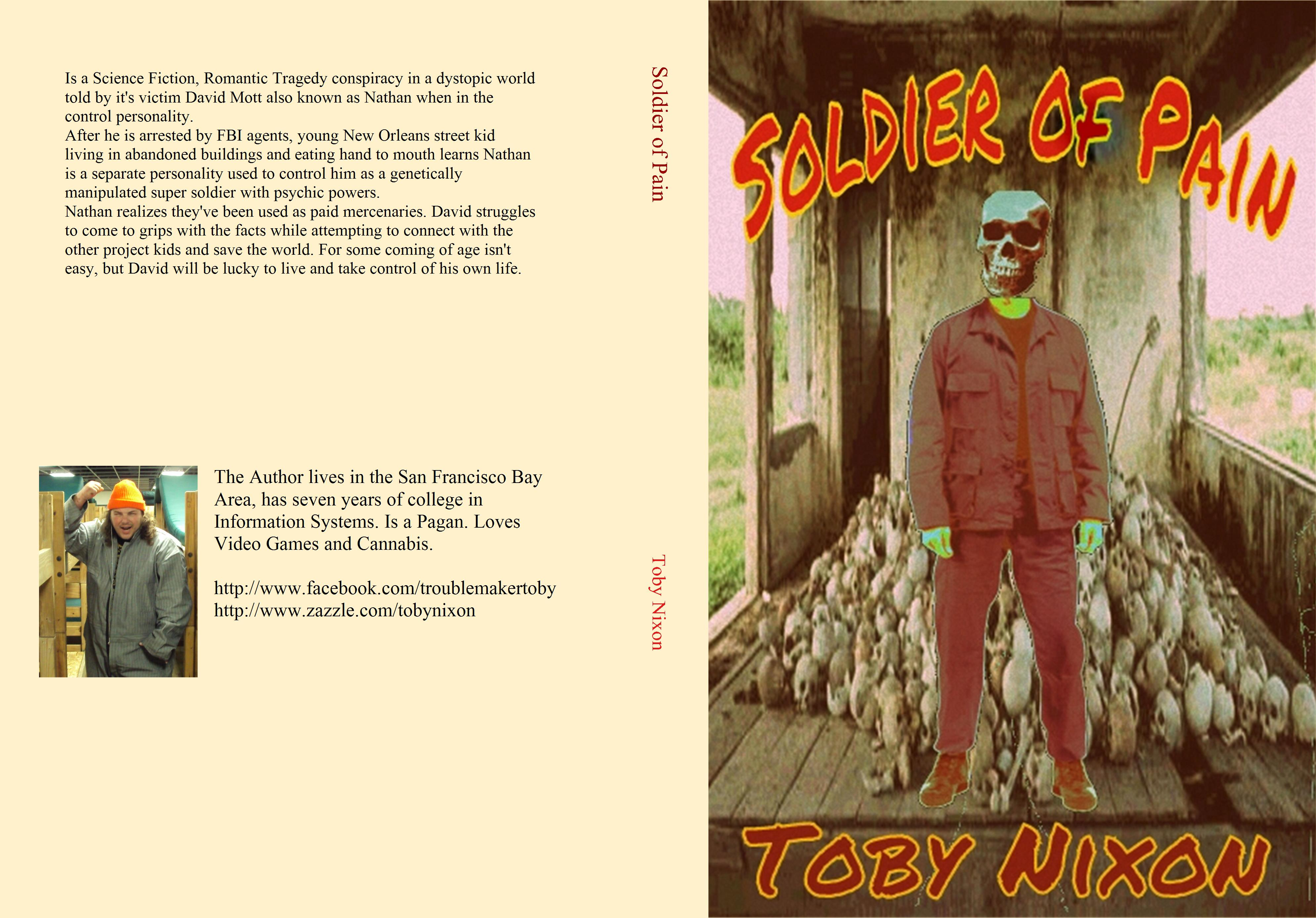 Soldier of Pain cover image