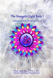 The Energetic Light Body I - Advanced Reiki Training Class 2 cover image
